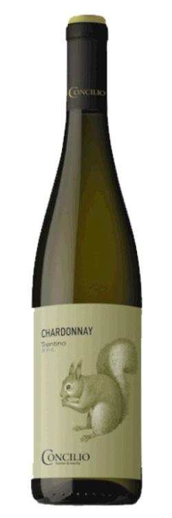 Concilio Chardonnay Trentino DOP